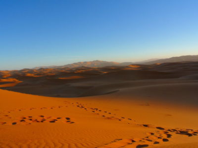 Wüstentour in der Sahara