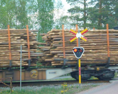 Zug mit Holzstämmen